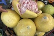 Bưởi Trung Quốc khổng lồ vỏ vàng bóng, tràn về chợ Việt