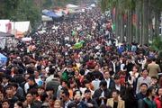 Hàng vạn người nô nức về đất Kinh Bắc trẩy hội Lim