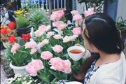 """Nàng dâu Việt """"bật mí"""" cách trồng hoa tulip để hoa nở rực rỡ đón Tết"""