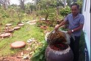 Bảo vệ môi trường ở các HTX trồng trọt, sản xuất