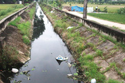 Mê Linh giải bài toán ô nhiễm môi trường chăn nuôi