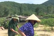 Thămtrang trại tiền tỉ của một thương binh ở Nghi Xuân