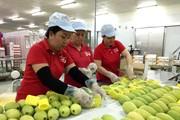 """Để đi chợ Châu Âu, nông sản Việt cần phải biết """"làm đẹp"""""""