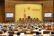 Hà Nội sẽ không tổ chức Hội đồng nhân dân cấp phường?