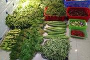 Bán rau và thịt lợn quê, kiếm chục triệu đồng/tháng