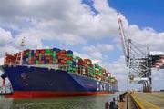 Thị trường vận tải biển năm 2020 khó có thể hồi phục mạnh mẽ