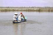 Đổ nợ vì phá ruộng đào ao nuôi cá giống