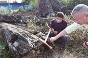 Ngỡ ngàng hơn 66 tỷ đồng khúc gỗ xấu xí vứt ngoài vườn, 5 năm sau mới biết là kho báu