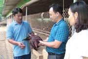 Vốn Hội dẫn đường, nông dân Yên Bái tự tin làm ăn