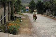 Khởi sắc nông thôn mới vùng cao Hát Lừu tỉnh Yên Bái
