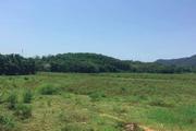 Quy định về chuyển quyền sử dụng đất đồng sở hữu