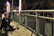 Đi câu cá đêm