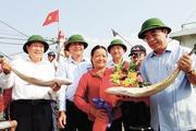 Gio Linh (Quảng Trị): Kinh tế biển phát triển tích cực