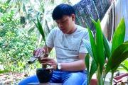 """Chàng 9x Bến Tre """"tung hàng"""" độc lạ dừa kiểng bonsai giá hơn triệu đồng/chậu bé tí"""