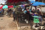 Vì sao công an điều tra mẹ của nữ sinh giao gà bị sát hại ở Điện Biên?