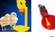 Các thiết bị chăn nuôi gà cần cho trang trại và hộ chăn nuôi