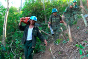 Những nghĩa cử lay động triệu trái tim trong cháy rừng khủng khiếp ở Hà Tĩnh