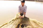 Vốn quỹ giúp nông dân thành Nam vượt khó
