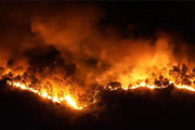 Nghi phạm gây cháy rừng 'kinh hoàng' ở Hà Tĩnh đối diện mức án nào?