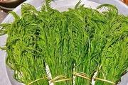 Đặc sản rau hôi vùng cao Na Hang