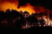 Rừng Hà Tĩnh lại cháy lớn, hàng trăm người lên núi Nầm suốt đêm dập lửa