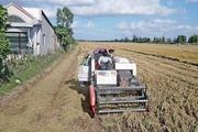 Vĩnh Long nặng lo xây nông thôn mới nâng cao