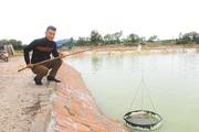 Hội nông dân Quảng Ninh tích cực vận động tăng trưởng nguồn Quỹ HTND