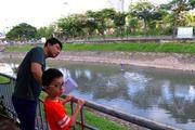 Hồ Tây mở cửa xả, sông Tô Lịch biến màu