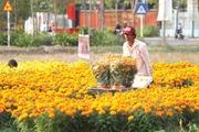10 năm Bình Chánh nở hoa