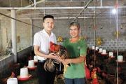 """Vốn Agribank giúp nông dân """"đất lửa"""" làm giàu"""