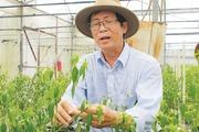Cần hệ thống giáo dục mở cho nông dân