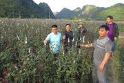 Sơn La: Tăng cường kiểm tra, giám sát nguồn gốc phân bón
