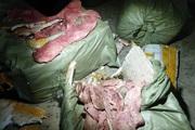 Lạng Sơn: Bắt 4 tạ nầm lợn đông lạnh, bốc mùi hôi thối