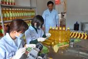 Yên Bái: Lần đầu tiên thu ngân sách đạt trên 3.500 tỷ đồng
