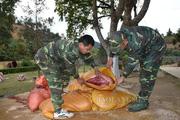 Lạng Sơn: Bắt hơn 3 tạ thịt lợn vượt đường mòn qua biên giới