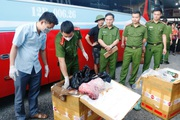 Hà Tĩnh: Bắt giữ xe vận chuyển 250kg sản phẩm động vật không rõ nguồn gốc xuất xứ