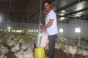 Nam Định: Nhiều nông dân giỏi, nông dân tỷ phú được Thủ tướng Chính phủ tặng Bằng khen