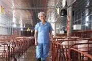 Quảng Trị: Nuôi lợn giống công nghệ cao kiểu gì mà một bà chủ trang trại thu hơn 23 tỷ mỗi năm?