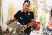 """Bình Thuận: """"Nàng Lưu Yến Phi"""" đảo Hòn Cau nín thở hồi hộp, vỡ òa hạnh phúc khi thấy con rùa biển làm điều này"""