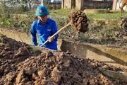 Chùm ảnh thanh niên Quảng Trị bật nhạc, xắn tay giúp nhân dân cải tạo đồng ruộng sau lũ