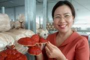 Trung tâm nông nghiệp công nghệ cao này có gì đặc biệt khiến Phó Chủ tịch Hội Nông dân Việt Nam ấn tượng?