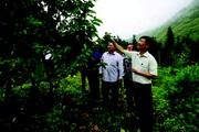 Vị Xuyên tạo đột phá từ xây dựng nông thôn mới