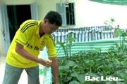 Bạc Liêu: Làm bể lót bạt nuôi loài ốc đặc sản trên cạn, cho ăn trái cây, ông nông dân chăm nhàn mà giàu lên