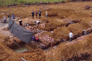 Trang trại dê DTH FARMT phối hợp với doanh nghiệp chăn nuôi dê quy mô lớn với vốn đầu tư từ 5-10 tỷ