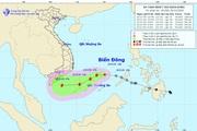 Cảnh báo: Xuất hiện gió mạnh cấp 9 trên vùng biển Bình Định đến Ninh Thuận, mạnh hơn áp thấp nhiệt đới