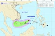 Tin mới nhất về bão số 14: Tâm bão cách đảo Song Tử Tây khoảng 120km về phía Nam, gió giật cấp 10
