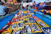 Bình Định: Bão số 14 suy yếu thành áp thấp, 30 tàu cá nằm trong vùng nguy hiểm, đang cứu nạn 1 tàu khác