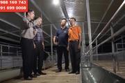 Trang trại dê DTH FARMT hợp tác với đại gia nông sản sạch Hòa Bình nuôi dê công nghệ cao
