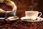 Giá nông sản hôm nay (6/12): Ghi nhận giá cà phê biến động mạnh trong tuần