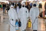 Hàn Quốc đã có 7 người tử vong vì virus corona, 763 người nhiễm